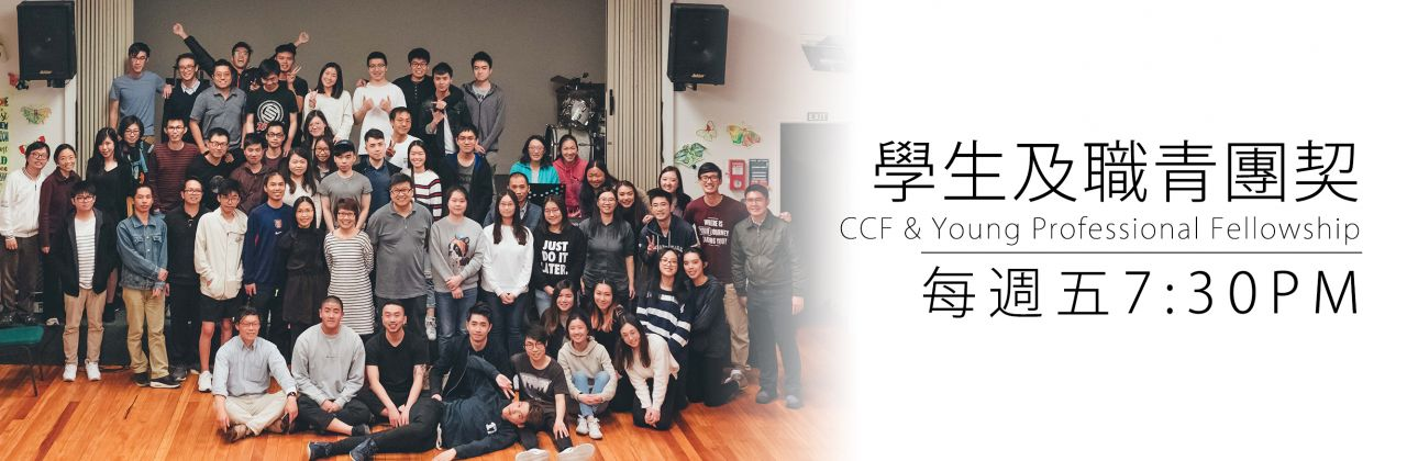 YoungPro_CCF_Fellowship